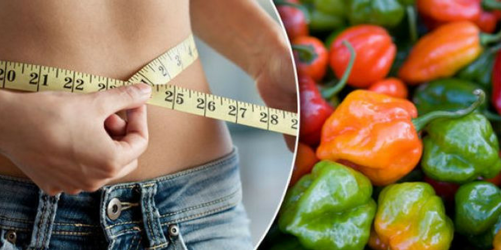Capsicum Can Also Burn Calories And Loose Weight , Buy Medicine Online, Online Pharmacy Noida, Online Medicines, Buy Medicine Online Noida, Nearby Pharmacy, Purchase Medicine Online, GoMedii