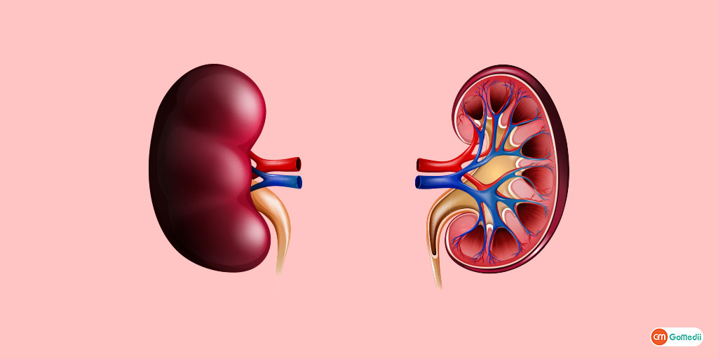 ckd lifestyle in hindi